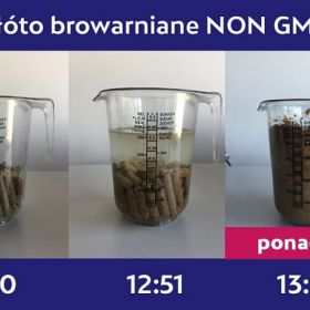 Młóto browarniane suche – wolne od GMO – dostawa od 1 tony
