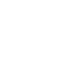 Siedlisko wiejskie k. Dzierzgowa - dom, zab. gospodarcze